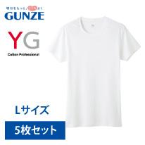 グンゼワイジーYV0013NホワイトサイズL半袖クルーネックTシャツ【GUNZEYG】