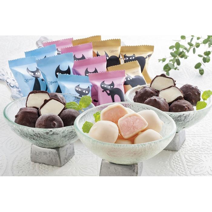 【送料無料】092 イーペルの猫祭りプチチョコアイス<A-EPH>【御中元】【お中元】【夏ギフト】
